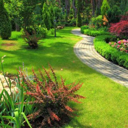 Varázsolj a kertedből tündéri oázist – 5+1 kertépítő praktika
