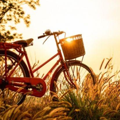 Biciklis utak kezdőknek!