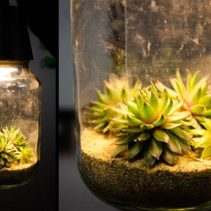 Lámpa és természet? Naná, hogy összefér!
