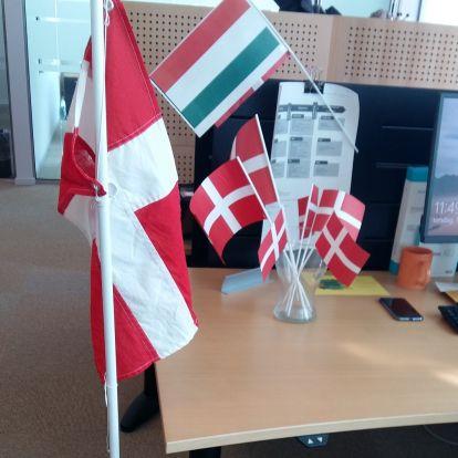 Hogyan ünneplik a születésnapot egy dán munkahelyen?