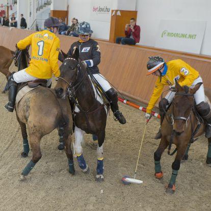 Ami a költségeket illeti, a lovaspóló tényleg a királyok sportja