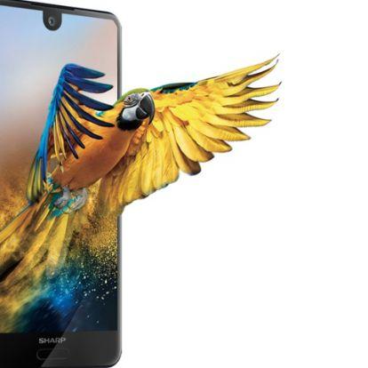 8 magos Sharp telefon 25 ezer forintért, ász ajánlat! (kupon)