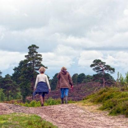 Napi 10 km gyaloglás egyenlő hetente mínusz egy kilóval? Igen!