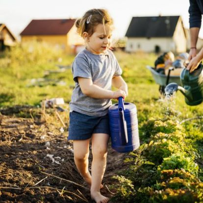 A nyári locsolás alapszabályai – Így csináld, hogy jól csináld