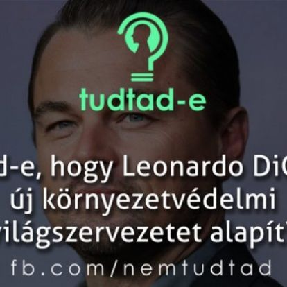 Új környezetvédelmi világszervezet létrehozásán dolgozik Leonardo DiCaprio