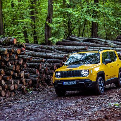 A jeti mosolya – Jeep Renegade Trailhawk-teszt