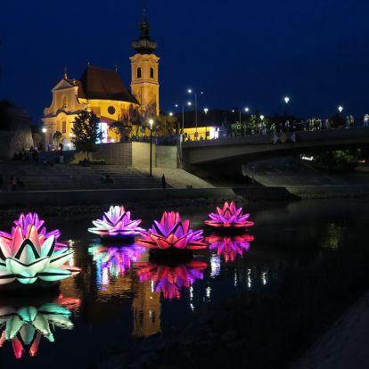 Magyarországon egyedülálló fényművészeti tárlatot mutatnak be Debrecenben
