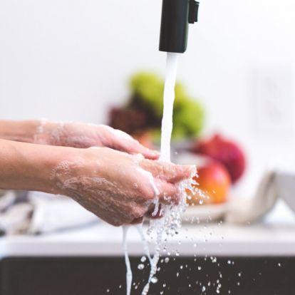 Tippek: hogyan szabadulj meg a muslicától