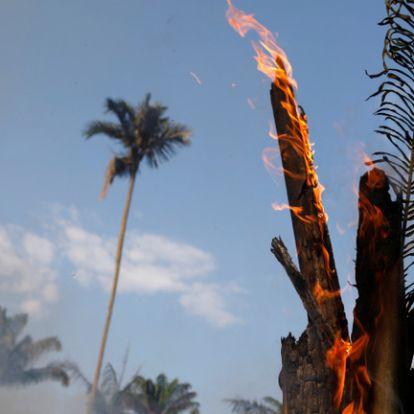 Hatalmas füstbe borult az Amazonas