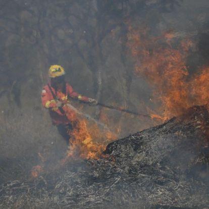 """""""Ami Brazíliában folyik, az valójában klímaháború"""""""