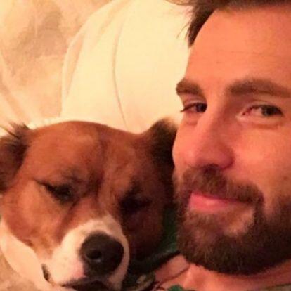 Szerencsére a hírességek is posztoltak a nemzetközi kutyanapon