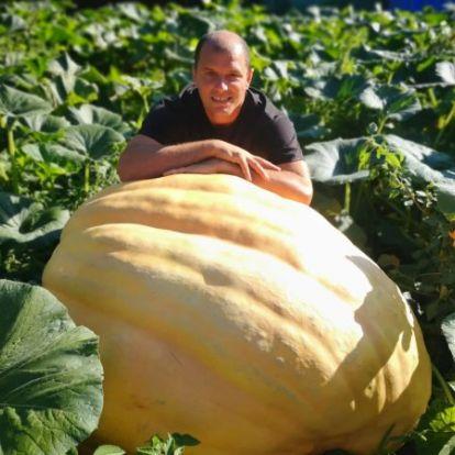 fmc.hu - Két éven belül az óriástök-termesztők világranglistájára kerülne a gárdonyi tökkirály