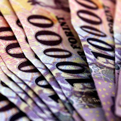 Növekedési kötvényprogram: beszáll Csányi, és Mészáros üzlettársa is