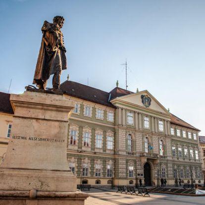 Hét párt és szervezet indul Vasban a megyei közgyűlési helyekért