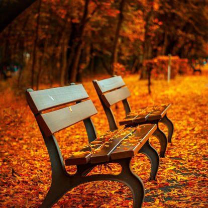 Itt van az ősz, itt van újra! Gondolatok a közelgő bekuckózós napokra
