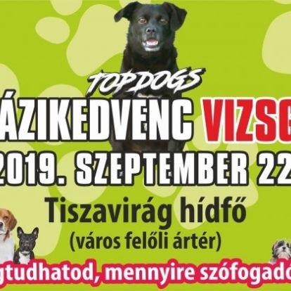 TopDogs Házikedvenc Vizsga a felelős állattartás népszerűsítéséért