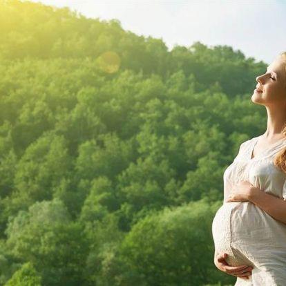 A 4D ultrahang a legnépszerűbb, de a kismamatúra a legmenőbb