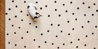Oprah megmutatja, hogyan szedd ki a kutyapiszkot a szőnyegből?