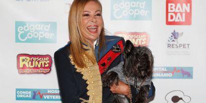 Ana Obregón, Maluma, Eva Longoria... las 'celebrities' no se resisten a disfrazar a sus perros por Halloween