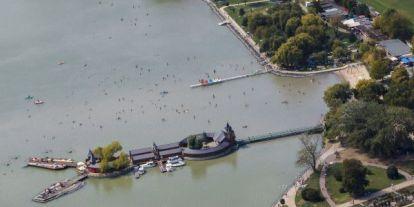 Veszélyben a Balaton: tiltakoznak a kutatók az ipari nádirtások ellen