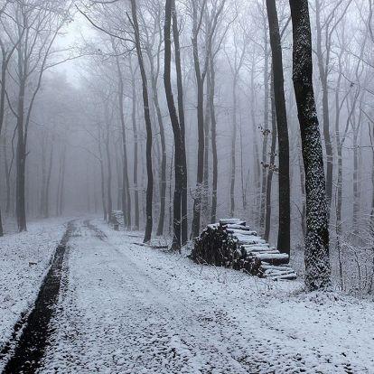 Itt egy csomó szép kép a havas Mecsekről!