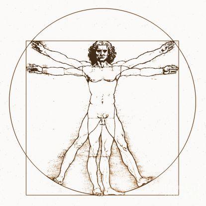 Funkcionális test, funkcinális erő