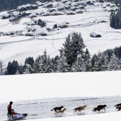 Gyermekkori álmát valósította meg a magyar Európa-bajnok kutyafogathajtó
