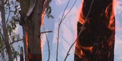 Akár az egész Föld klímáját megváltoztathatják az ausztráliai erdőtüzek