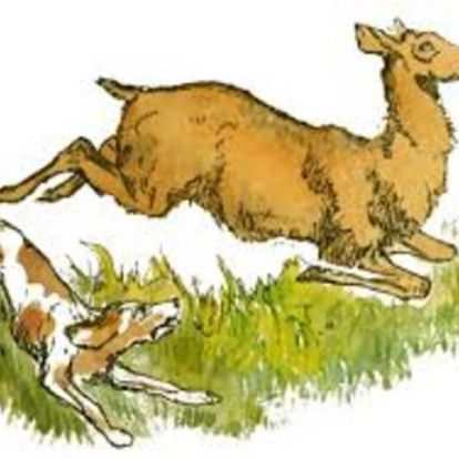 Kutyaütők