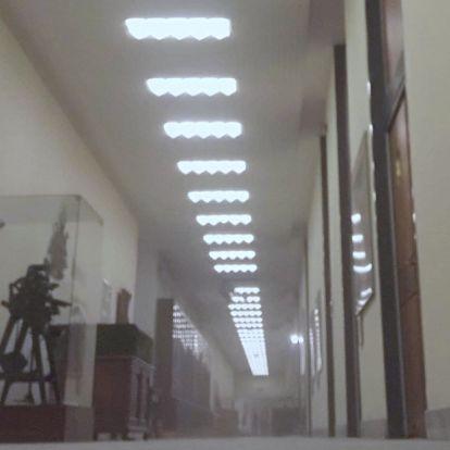 Portól fulladoznak az Országos Széchényi Könyvtárban
