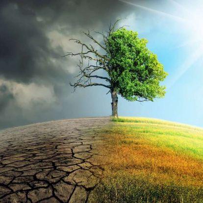 Túlélni a klímaválságot