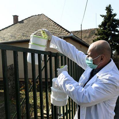 Így segítik az időseket a koronavírus-járvány idején: Ezekben a városokban tartós élelmiszert és ebédet is házhoz visznek