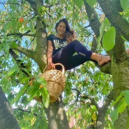 Horváth Éva simán bevállalja a fára mászást