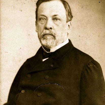 A bíróság helyett hatalmas ünneplés várta Pasteurt kockázatos emberkísérlete után