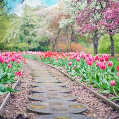 Készíts kerti utat: az olcsóbb verziótól a drágábbig