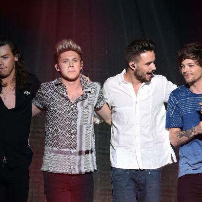 Hollywoodig csak Harry Styles ért el, de minden tag nagyot nyert a One Directionnel