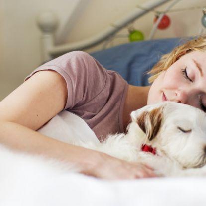 Ezeket a dolgokat tartsd szem előtt, ha együtt szeretnél aludni a kutyáddal