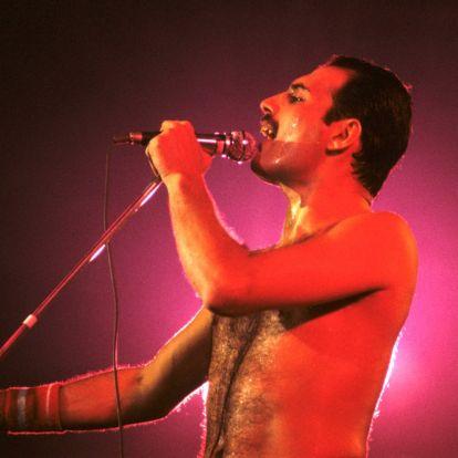 Freddie Mercury végrendelete még a párját is meglepte, nem azt kapta, amire számított