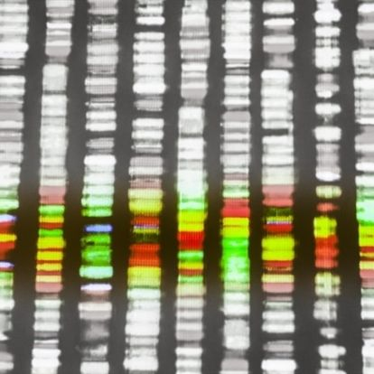 New methods help to accurately identify cancers' hidden genetic losses, duplications