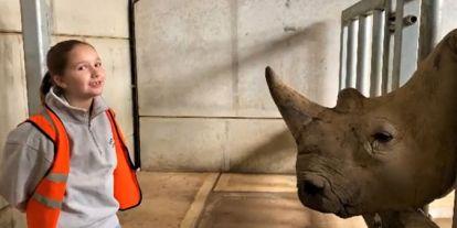 Harper Beckham y su especial relación con perros, jirafas... ¡y rinocerontes!