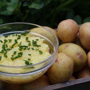 3 mennyei krumplisaláta, amit imádni fog a család