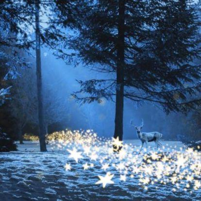 Ezt hozza a hét az asztrológus szerint! – általános horoszkóp, december 21-27.