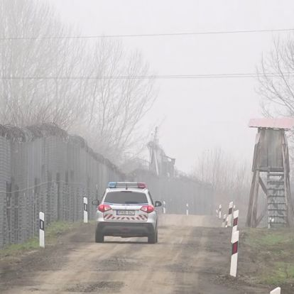 Közel 80 határsértőt fogtak el