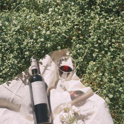 The Best Female-Owned Wines To Virtually Cheers With On International Women's Day