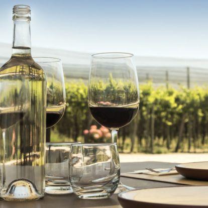 Havi hárommilliós fizetésért csak bort kell inni – vállalnád?