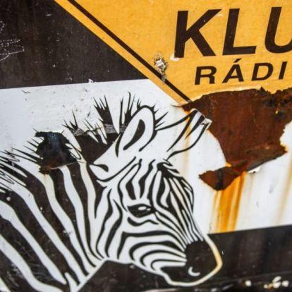 """Klubrádió: Mitől """"táltosodott meg"""" a Spirit FM?"""