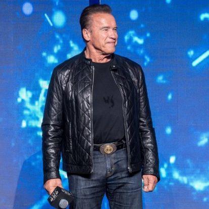 Fergeteges sakkpartit vívott Arnold Schwarzenegger és Mike Tyson