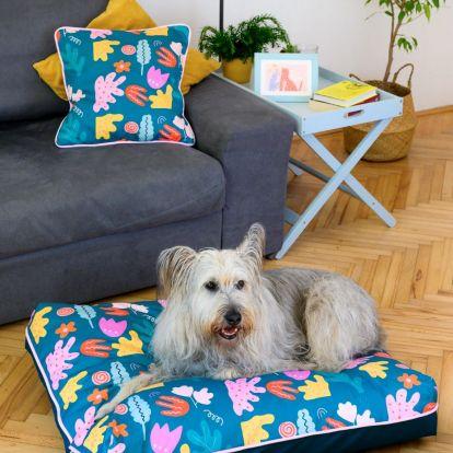 Állati jó dizájn hír: limitált kollekció kutyákra szabva