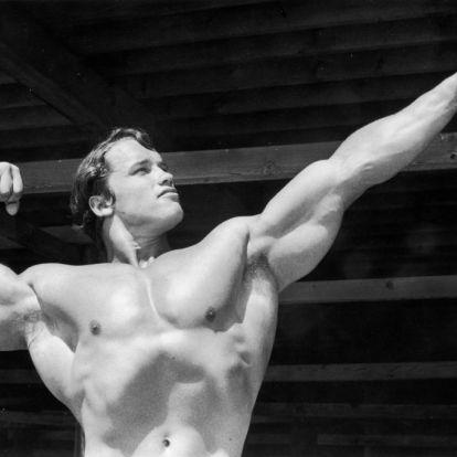 Nők, akik elcsavarták a Terminátor fejét – őket szerette a szülinapos Arnold Schwarzenegger