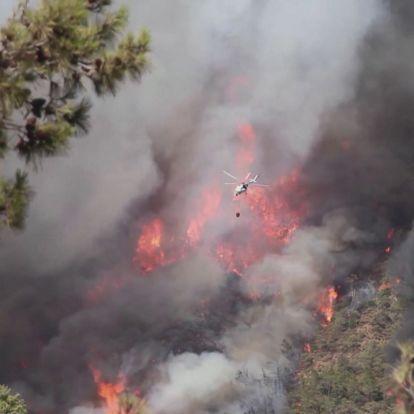 Lángolnak az erdők Törökországban
